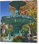 Madison Water Fountain In Fall Wood Print