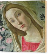 Madonna And Child Crowned By Angels Wood Print