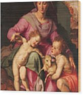 Madonna And Child With The Infant Saint John The Baptist Wood Print