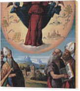 Madonna In Glory And Holy Hones Wood Print
