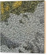 Madonna True Blue Material Girl Coins Mosaic Wood Print