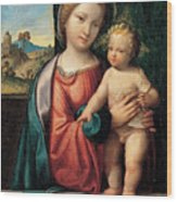 Madonna With The Child Wood Print