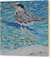 Maestro Of The Beach Wood Print
