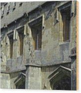 Magdalen Gargoyles Wood Print