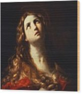 Magdalene In Penitence 1635 Wood Print