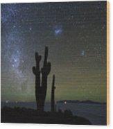 Magellanic Clouds Milky Way And Cactus Silhouette Incahuasi Island Bolivia Wood Print