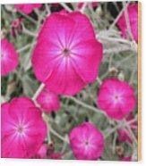 Magenta Blooms Wood Print