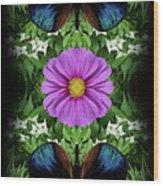 Magenta Daisy Wood Print