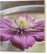 Peaceful Clematis Wood Print