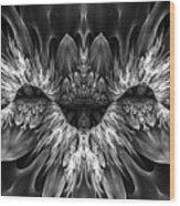 Magenta Until - Black And White 2 Wood Print