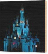 Magic Kingdom Wood Print