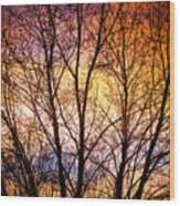 Magical Colorful Sunset Tree Silhouette Wood Print