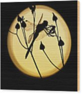 Magical Dragonfly Wood Print