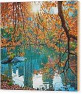 Magical Fall Wood Print