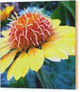 Magical Flower Wood Print