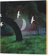 Magical Forest Night Wood Print