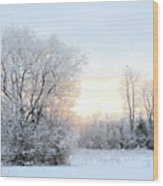 Magical March Morning Wood Print