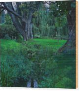 Magical Woodland Glade Wood Print