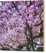 Magnificant Magnolias Wood Print