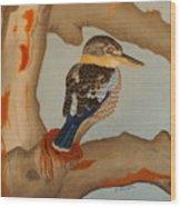 Magnificent Blue-winged Kookaburra Wood Print by Brian Leverton