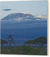 Magnificent Kilimanjaro Wood Print