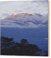 Magnificent Mount Kilimanjaro Wood Print
