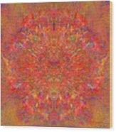 Magnificent Splatters Wood Print