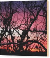 Magnificent Sunset And Trees Wood Print