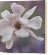 Magnolia #1  Wood Print