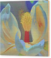 Magnolia Abstract Wood Print