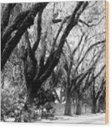 Magnolia Ave Wood Print