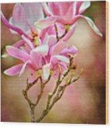 Magnolia Branch Wood Print