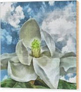 Magnolia Dreams Wood Print by Wendy J St Christopher