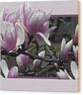 Magnolia Fantasy II Wood Print
