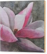 Magnolia In Shadow Wood Print