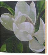 Magnolia Light Wood Print