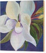 Magnolia Painting Wood Print