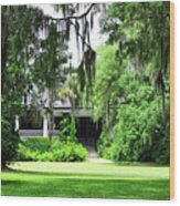 Magnolia Plantation Back Entrance Wood Print