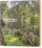Magnolia Plantation Bridge Cypress Garden Wood Print