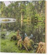 Magnolia Plantation Cypress Garden Wood Print