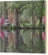 Magnolia Plantation Gardens Series Iv Wood Print
