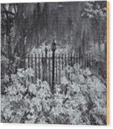 Magnolia Plantation Lightpost Wood Print