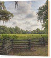 Magnolia Plantation South Carolina Wood Print