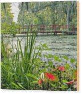 Magnolia Plantation Swamp Garden Wood Print