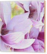 Magnolia Time Wood Print