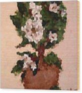 Magnolia Topiary IIi  Wood Print