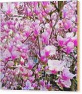 Magnolia Tree Beauty #1 Wood Print