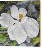 Magnolia Tree Flower Wood Print