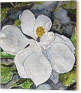 Magnolia Tree Flower Wood Print
