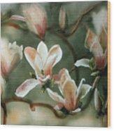 Magnolias In Bloom Wood Print